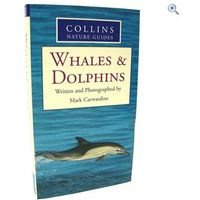 Collins Nature Guide: Whales & Dolphins