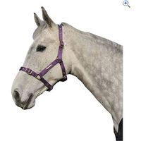 Cottage Craft Adjustable Riding Headcollar - Size: COB - Colour: Purple