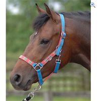 Cottage Craft Aurora Head Collar - Size: FULL - Colour: BLUE-RED