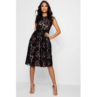 Aria Embroidered Organza Skater Dress - black