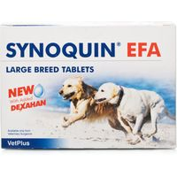 Synoquin Tasty Large Breed
