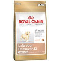 Royal Canin Breed Health Nutrition Labrador Retriever Junior