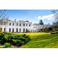 Afternoon Tea for Two at The Mount Somerset
