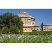 Stress Relief Pampering Spa Experience at The Ickworth