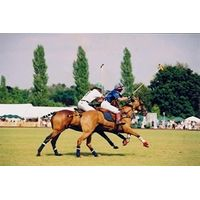 Discover Polo Experience at Ascot Park