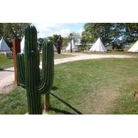 Two Night Stay in a Tipi at Pinewood Holiday Park