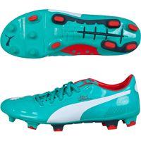 Puma evoPOWER 2 Firm Ground Football Boot Green