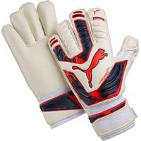 Puma evoPOWER Protect 2 GC Goalkeeper Gloves White