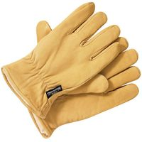 Dickies Dickies GL0200 Lined Leather Gloves (XL)