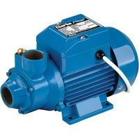 Clarke Clarke BIP1000 1 Electric Water Pump