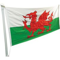 One Stop Promotions One Stop Promotions Welsh Dragon Sewn Flag with Rope & Toggle (6x3ft)