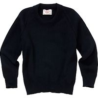Alleyns Junior School Unisex Junior Crew Neck Pullover, Navy