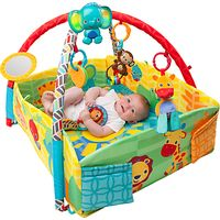 Bright Starts Sensory Sunny Safari Baby Activity Gym