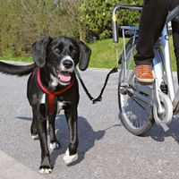 Trixie Biker Set de Luxe - Suitable for large and heavy dogs