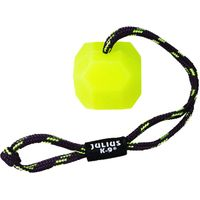 Neon (Fluorescent) IDC Ball with Cord - Diameter 6cm