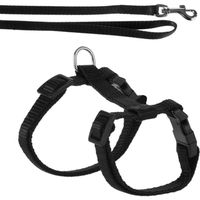 Kitten Harness with Lead - Black