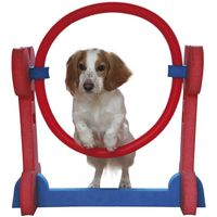 Rosewood Small Dog Agility Set - Saver Bundle!* - 3 Agility Obstacles