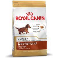 Royal Canin Dachshund Junior - 1.5kg