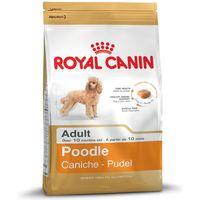 Royal Canin Poodle Adult - 7.5kg
