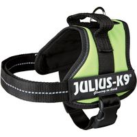 Julius-K9 Power Harness - Light Green - Mini-Mini