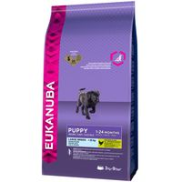 Eukanuba Large Breed Puppy Food - 15kg