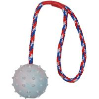 Trixie Rubber Ball with Throwing Handle - approx. 6cm / Cord: 30cm