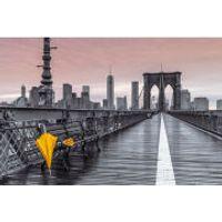Assaf Frank Brooklyn Bridge Umbrella Maxi Poster (61 x 91.5cm)