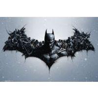 Batman Arkham Origins Arkham Bats Maxi Poster (61 x 91.5cm)