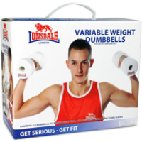 Variable Weight Dumbbells for Nintendo Wii
