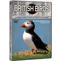 British Birds: Mountains, Coasts and Cliffs