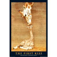 First Kiss - Maxi Poster - 61 x 91.5cm