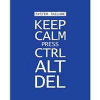Keep Calm Press Ctrl Alt Del - 16 x 20 Inches Mini Poster