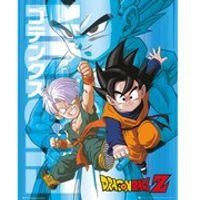 Dragon Ball Z Trunks And Goten - 16 x 20 Inches Mini Poster