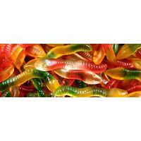 Jelly Pythons