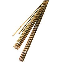Wickes Bamboo Canes 2.1m Pack of 10