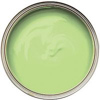 Wickes Colour @ Home Vinyl Silk Emulsion Paint- Grass 2.5L