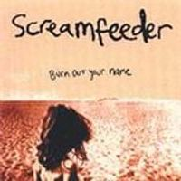 Screamfeeder - Burn Out Your Name (Music CD)
