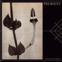 Prurient - Black Post Society, The (Music CD)