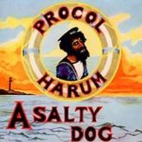 Procol Harum - Salty Dog (2 CD) (Music CD)
