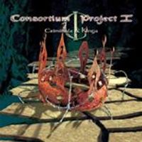 Consortium Project 1 - Criminals & Kings (Music CD)