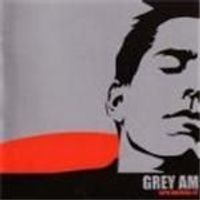 Grey Am - With Matches Lit (Music Cd)