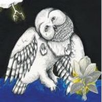 Songs: Ohia - Magnolia Electric Co. - 10 Year Anniversary Edition (Music CD)