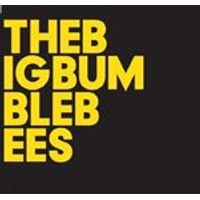 Baby Dee - The Big Bumble Bees (Music CD)
