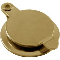 Brassed 180d Spy Hole Cover