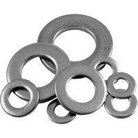 Pack of 10 Stainless Form A Washers