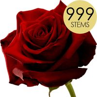 999 Red Roses