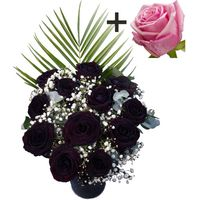 A single Pink Rose surrounded by 11 Black Roses