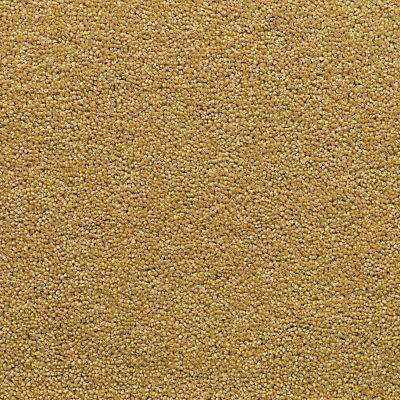5032647021976 | Adam Carpets Aviemore Twist Carpet Store