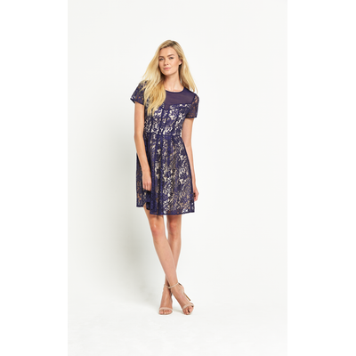 Oasis Lucy Lace Skater Dress