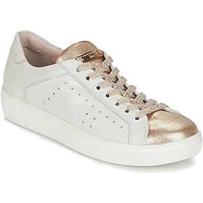 Tosca Blu  -  women's Shoes (Trainers) in white